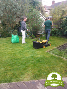 Lawn Care Services in Liverpool